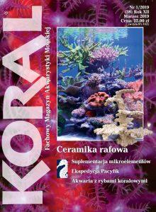 Koral 1/2019