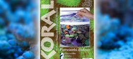 Koral numer 3 2012