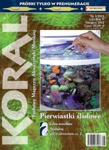 Koral nr 3/ 2012