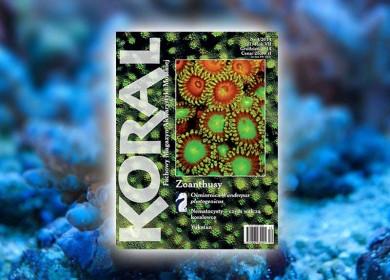 koral 4-2014