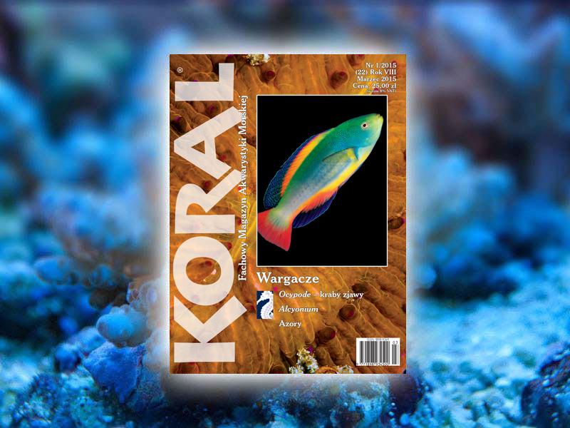 koral 1-2015