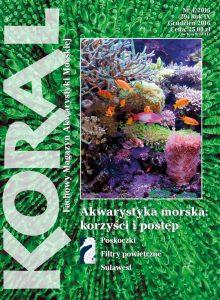 Koral 4/2016