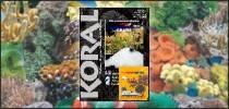 magazyn koral sera marin